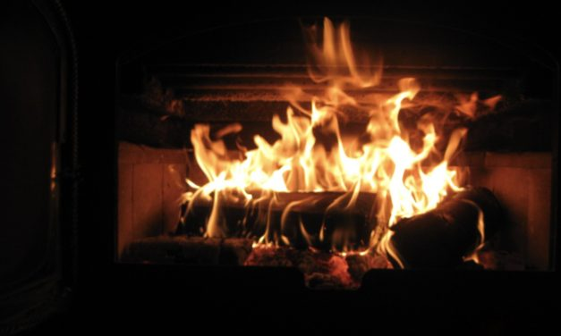 Forging a Relationship with Fire